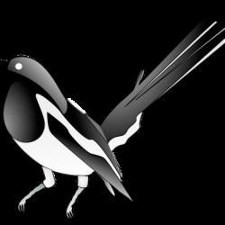 logo-soroka